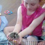 Girl Holds Hamster